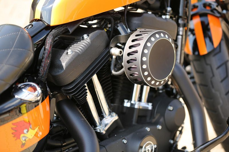 Custom Air Cleaner for H-D and Metric by Thunderbike