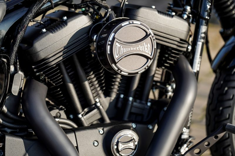 Thunderbike Harmony • Customized Harley-Davidson Sportster Forty-Eight
