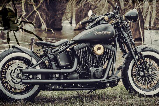 Harley Softail Slim >> Customized Harley-Davidson Softail Cross Bones motorcycles ...